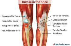 0304ed45e76787d5ef6d4f04c255580b--knee-pain-physical-therapy