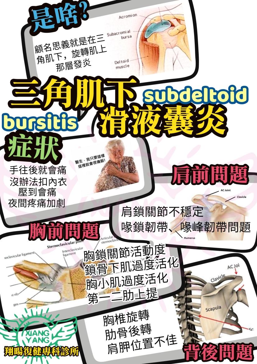 三角肌下滑囊炎 (1)